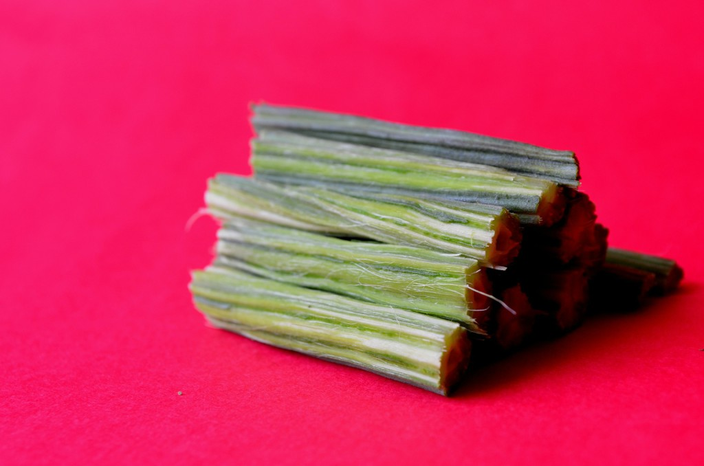 Moringa Oleifera Trommelstockgemüse
